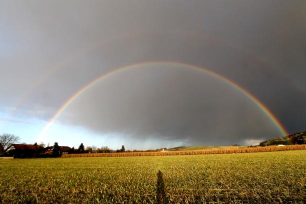 regenbogen_ganz